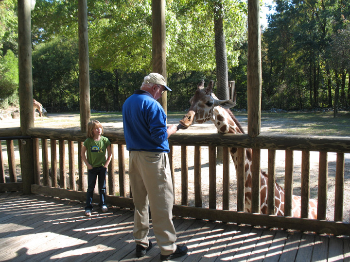Top ten things to do columbia sc for Columbia at south river gardens